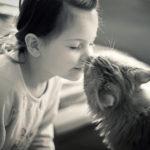 Каких людей любят кошки