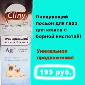 Лосьон с борной кислотой для кошек