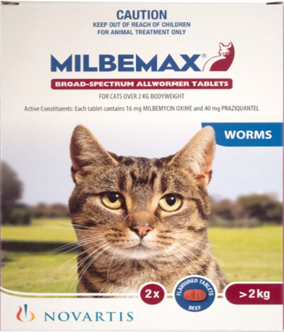 дицинон инструкция по применению уколы для кошек