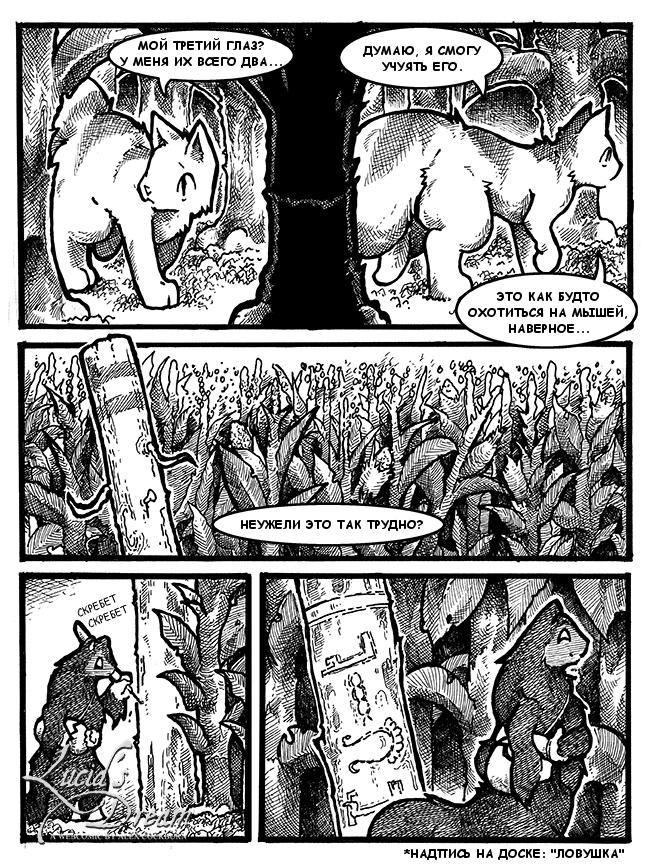 кот и кукурузное поле