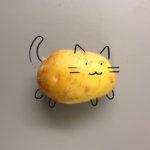Можно ли кошкам картофель